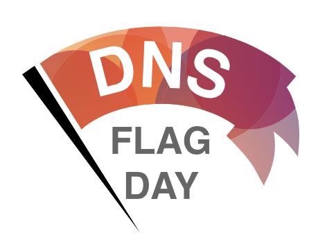 DNS Flag Day Thumbnail